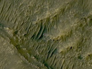 The Mars perseverance rover looks as wee and lonely as ever in this satellite image from above the Red Planet.