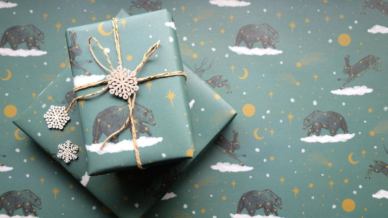 Winter Animal Constellation Christmas Wrapping Paper