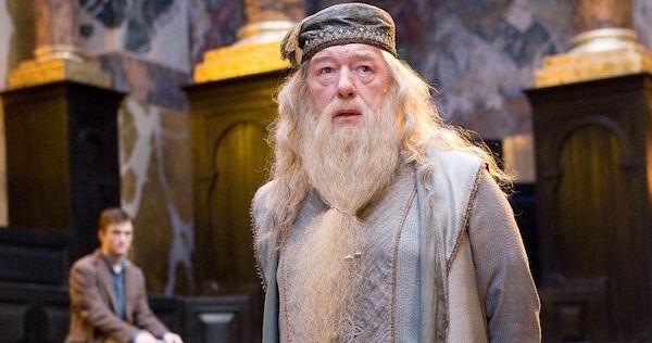 Albus Dumbledore Newt Scamander
