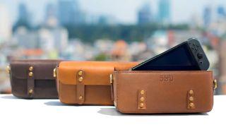 Nintendo Switch Kickstarter: Sefu Bag