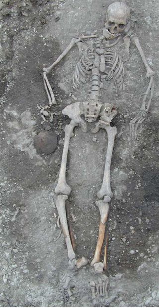 skeleton excavated from a grave in Sweden