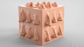 How to sculpt a human nose in ZBrush: 4 easy steps