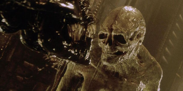 From A To Xenomorph: The 14 Different Creatures In The Alien