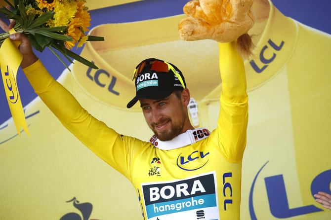 Peter Sagan took over the yellow jersey after winning stage 2 at the Tour de France