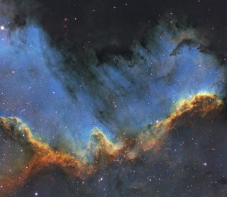 Cygnus Wall by Bill Snyder
