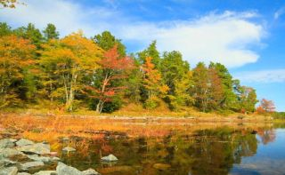 Fall foliage from Mike Kvackay's time-lapse video.