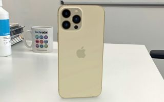 iPhone 13 Pro Max in AR
