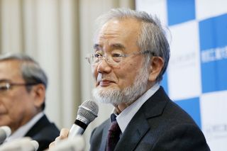 Yoshinori Ohsumi attends a press conference at the Tokyo Institute of Technology on Oct. 3, 2016 in Tokyo, Japan.