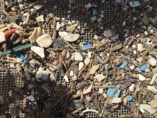 plastics kailua beach