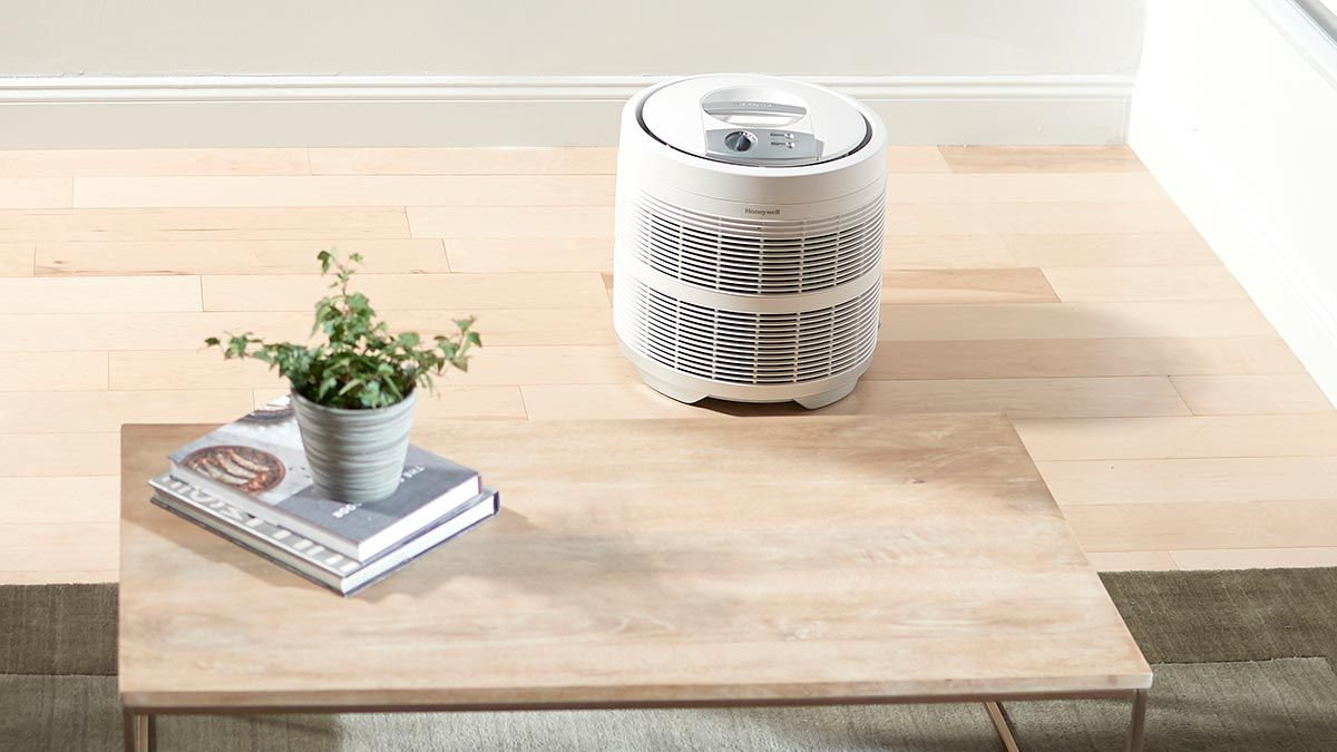 5 Reasons You Need an Air Purifier