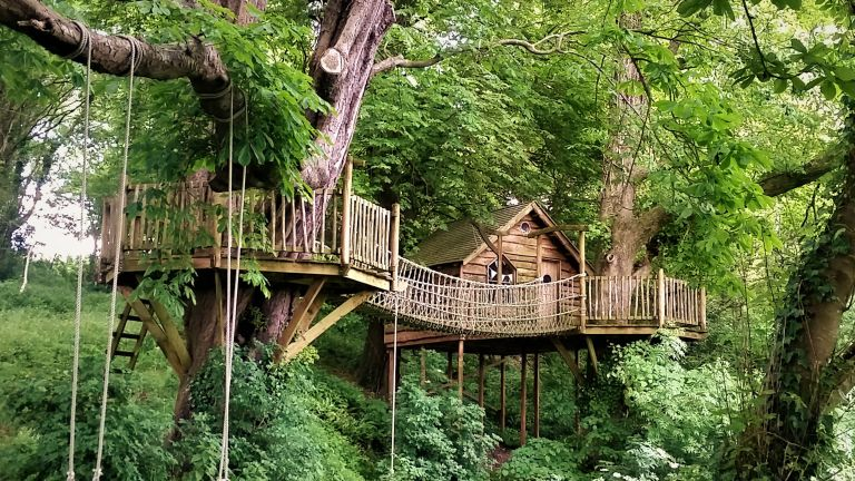 treehouse ideas: squirrel design