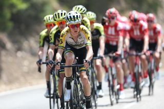 Australian road race champion Cameron Meyer (Mitchelton-Scott) leads the peloton on stage 2