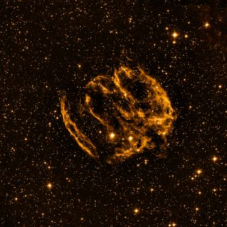 Supernova W49B may be home to the youngest black hole in the Milky Way galaxy.
