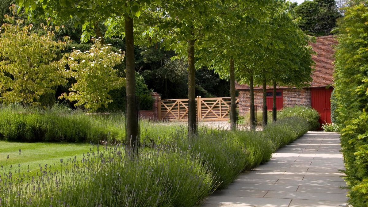 Landscaping around trees: 10 stunning ways to bring them into your plot
