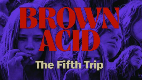 Cover art for Various Artists - Brown Acid: The Fifth Trip album