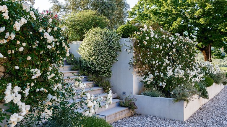 Raised bed garden ideas with white planter