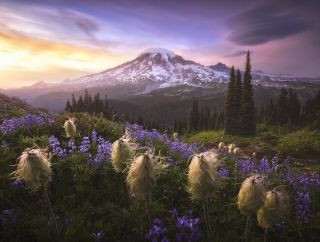 The International Landscape Photographer of the Year 2020 - Second Place Joshua Snow, USA