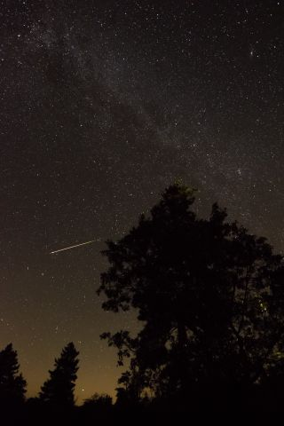 A Perseid meteor streaks over Mount Laguna, California in this stunning photo captured by skywatcher Jason Miller in the wee hours of Aug. 12, 2016 during the peak of the 2016 Perseid meteor shower.