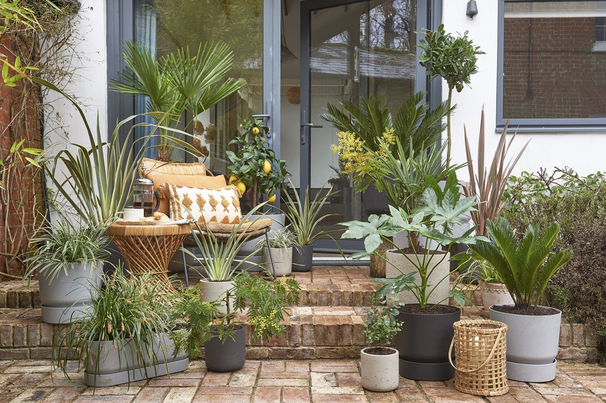 10 ideas for small gardens on a budget - how to maximise style for minimal cost