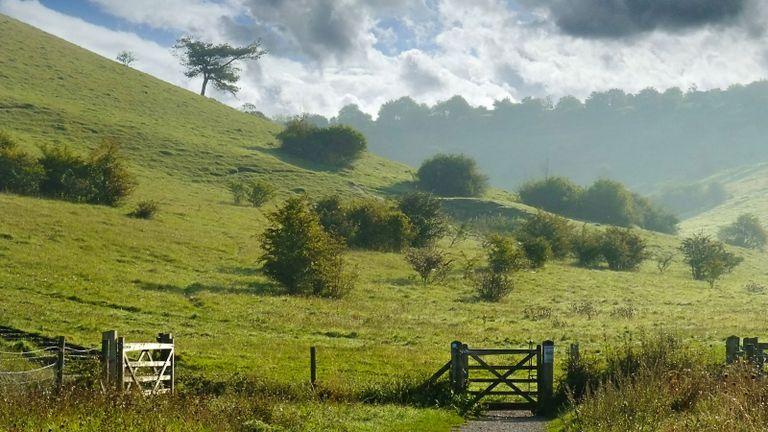 Vanessa Barneby of Barneby Gates talks about Hampshire