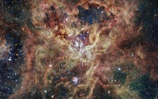 The Tarantula Nebula 1920