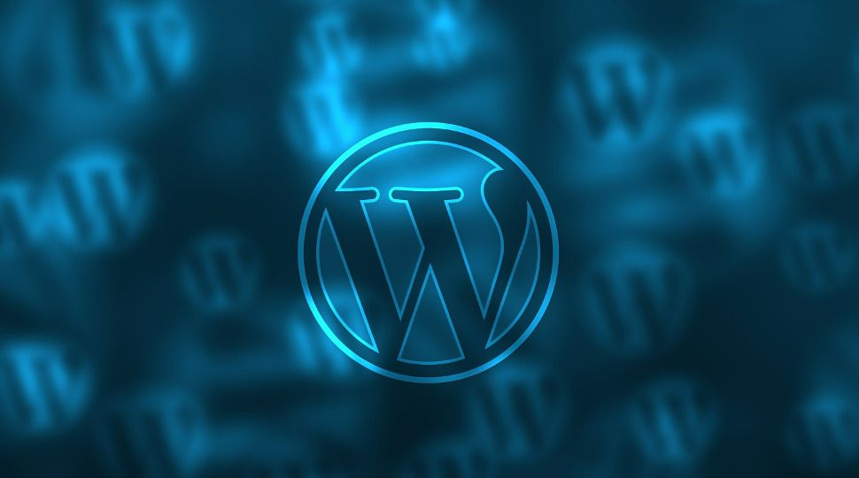 Multiple security flaws put 3.5 million WordPress websites at risk