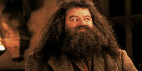 First Look At Hagrid In Universal Studios Orlando's Hagrid's Magical Creatures Motorbike Adventure