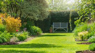 How to aerate your lawn: A rusty wrought iron white bench on the grass in a sunny English Garden
