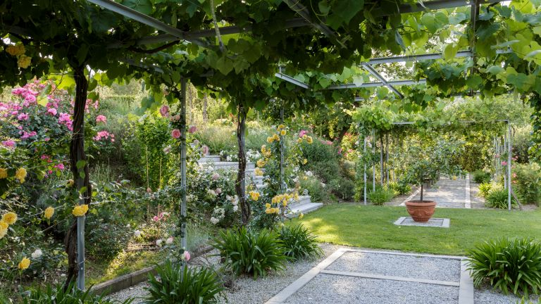 Mediterranean garden with pergola and flowers