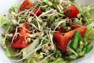 Sprouts in a salad