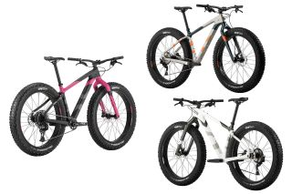 Salsa's 2020 fat bike line-up