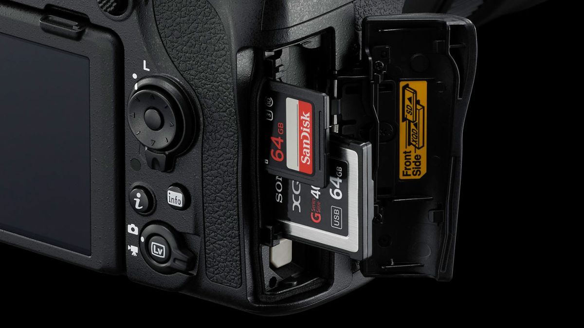 Nikon Z 6 and Z 7 major firmware updates coming soon