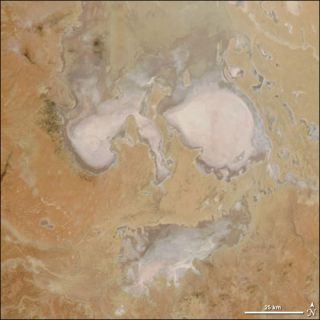 Australia's nearly always dry Lake Eyre looks like a ghostly face in this NASA satelilte image.