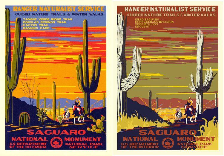 Saguaro National Monument Travel Advertising Poster 1930/'s