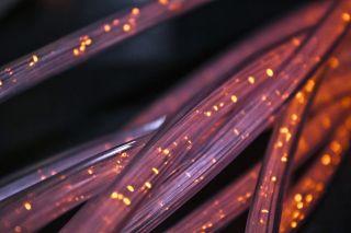 Glasfaser-Kabelstränge in der Nahaufnahme
