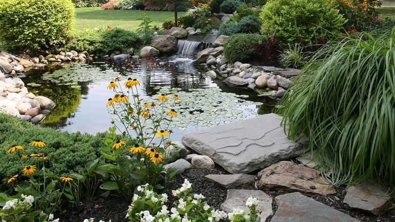 monty don pond care tips – garden pond surrounded by flowers and plants