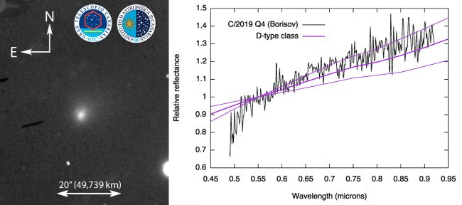 Observations of Comet C/2019 Q4 compared with average data for a class of solar system objects.