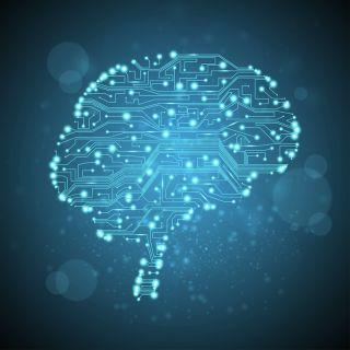 A computer circuitboard brain.