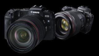 Canon EOS R vs RP
