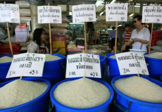 crops, rice, climate change