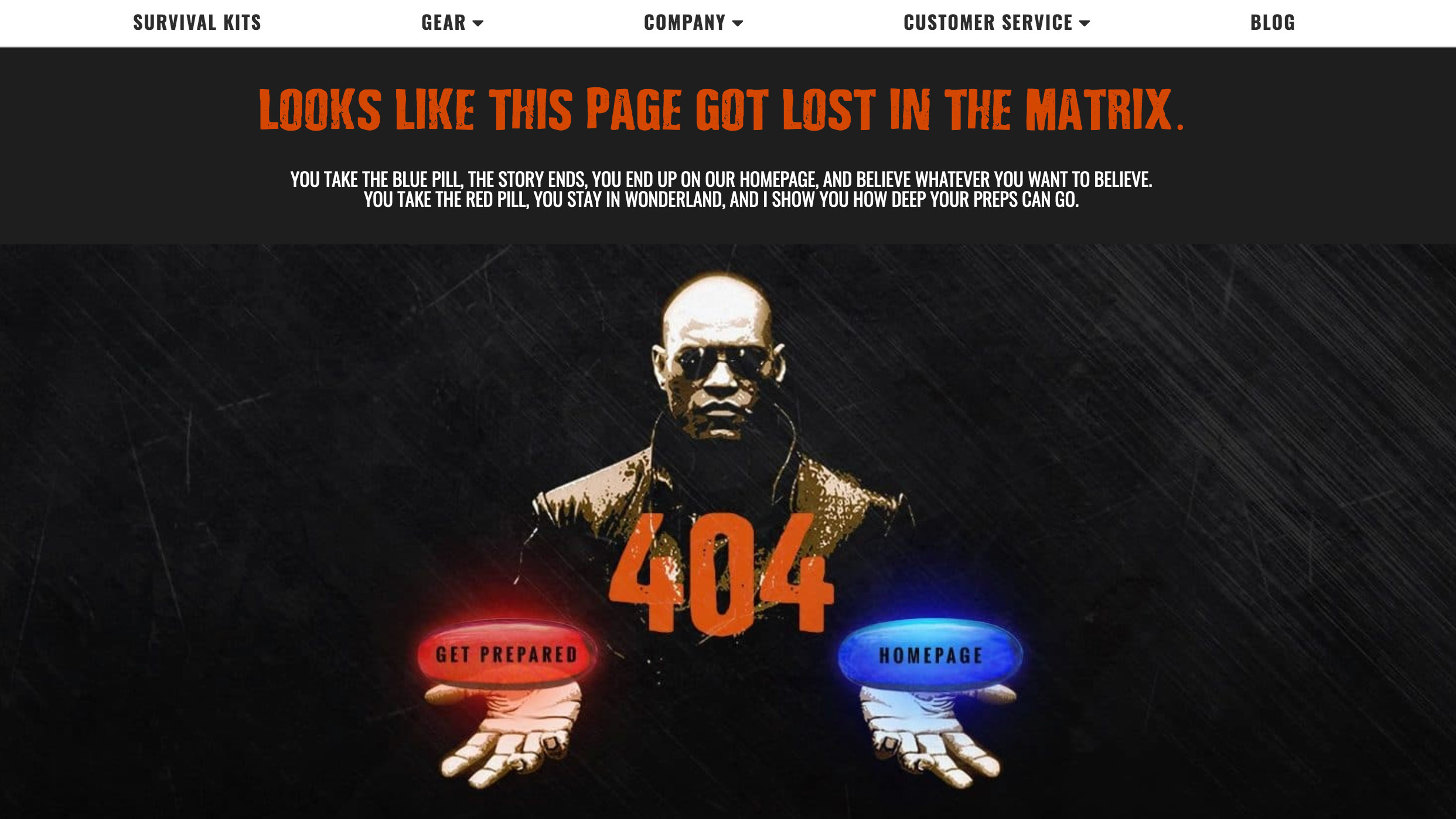 404 pages: ready to go survival