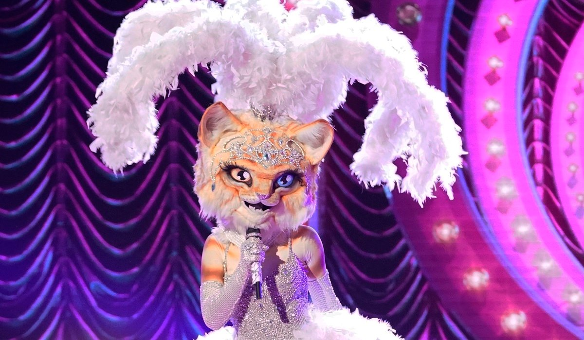 The Kitty The Masked Singer Fox