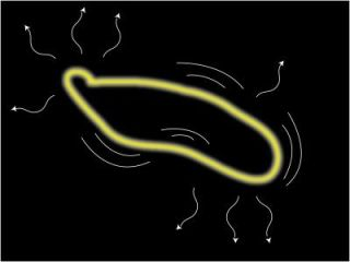Cosmic-string loops wiggle and oscillate, producing gravitational waves, then slowly shrink as they lose energy until they disappear.