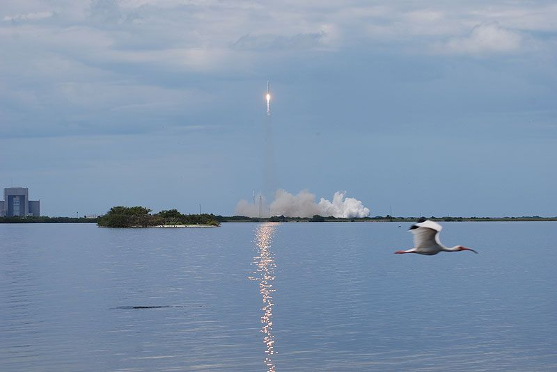 Happy birthday, Falcon 9! SpaceX's workhorse rocket debuted 10 years ago today