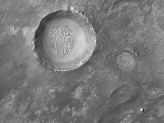 When NASA's Mars Reconnaissance Orbiter flew over Schroeter Crater on the Red Planet, it captured views of some interesting smaller craters within the crater's floor. The two impact craters shown here are located inside Schroeter Crater, which is about 190 miles (300 kilometers) wide, and they contain some intricate dune structures on their own crater floors. These Martian dunes were shaped by wind, much in the same way that dunes form on Earth.