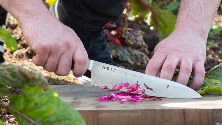 Best chef's knife, cook's knife