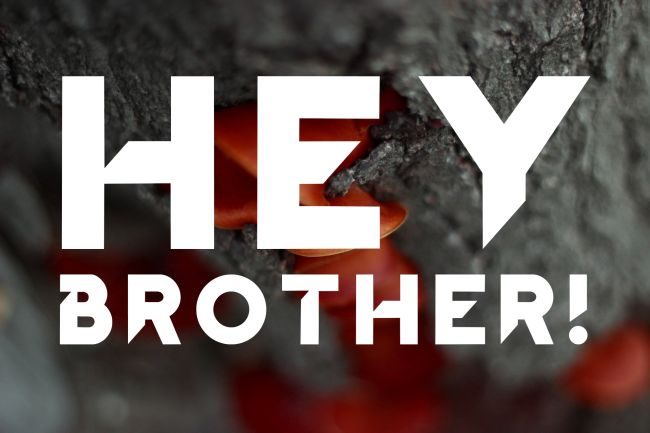Hey Brother! written in Hey Brother!