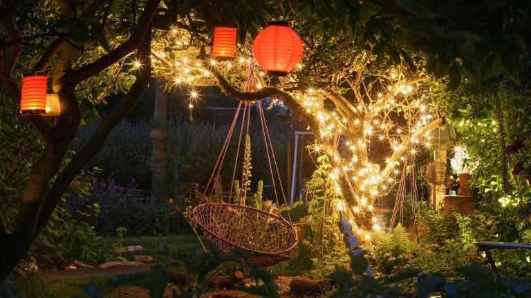 string light ideas: in tree with hanging egg chair