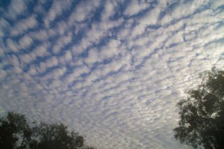 This is a picture of stratocumulus clouds.
