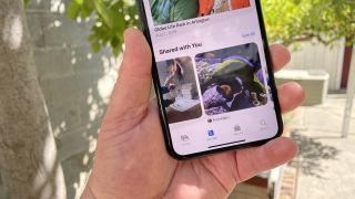 How to use iOS 15's Shared with You feature